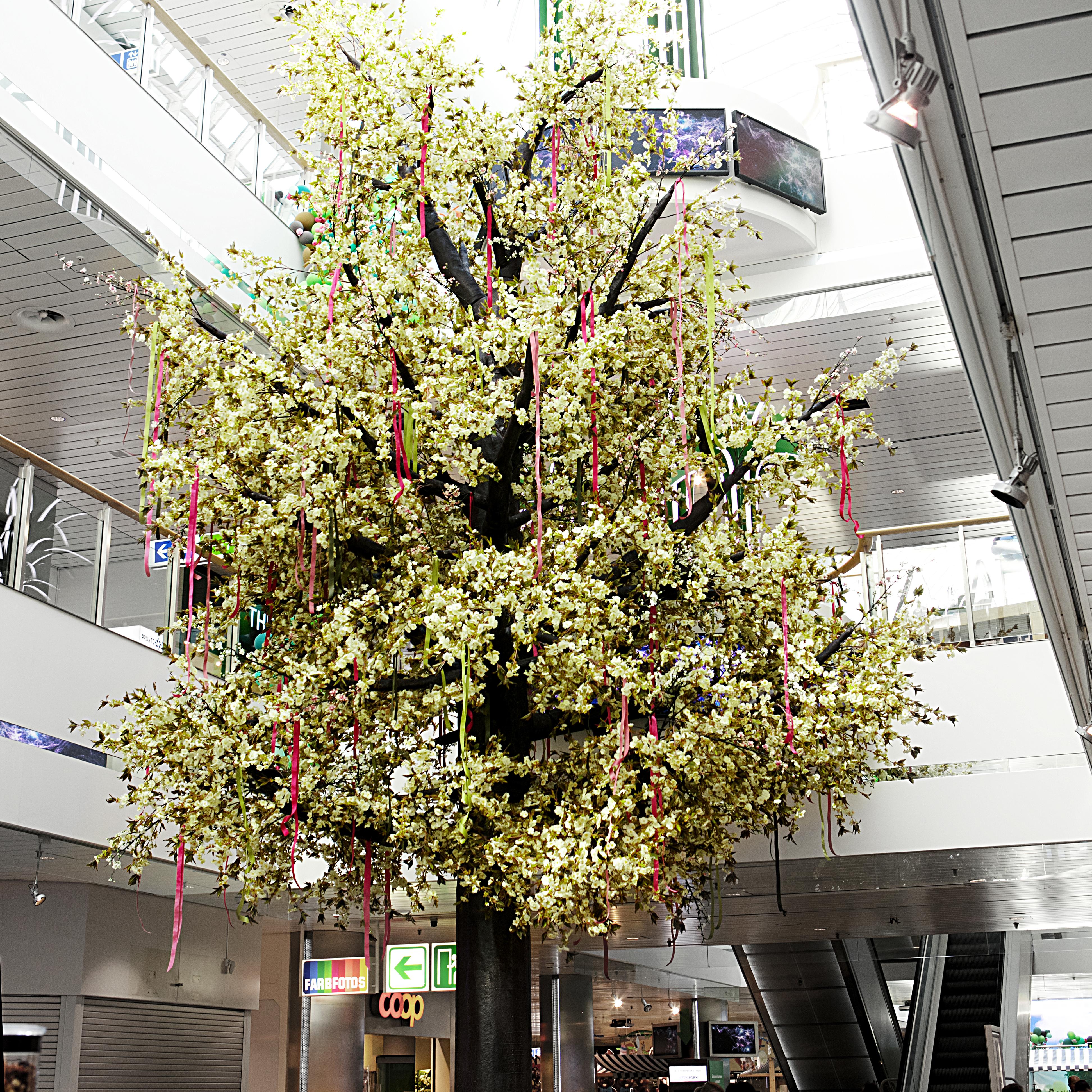 Letzipark my tree Frühlingsbaum