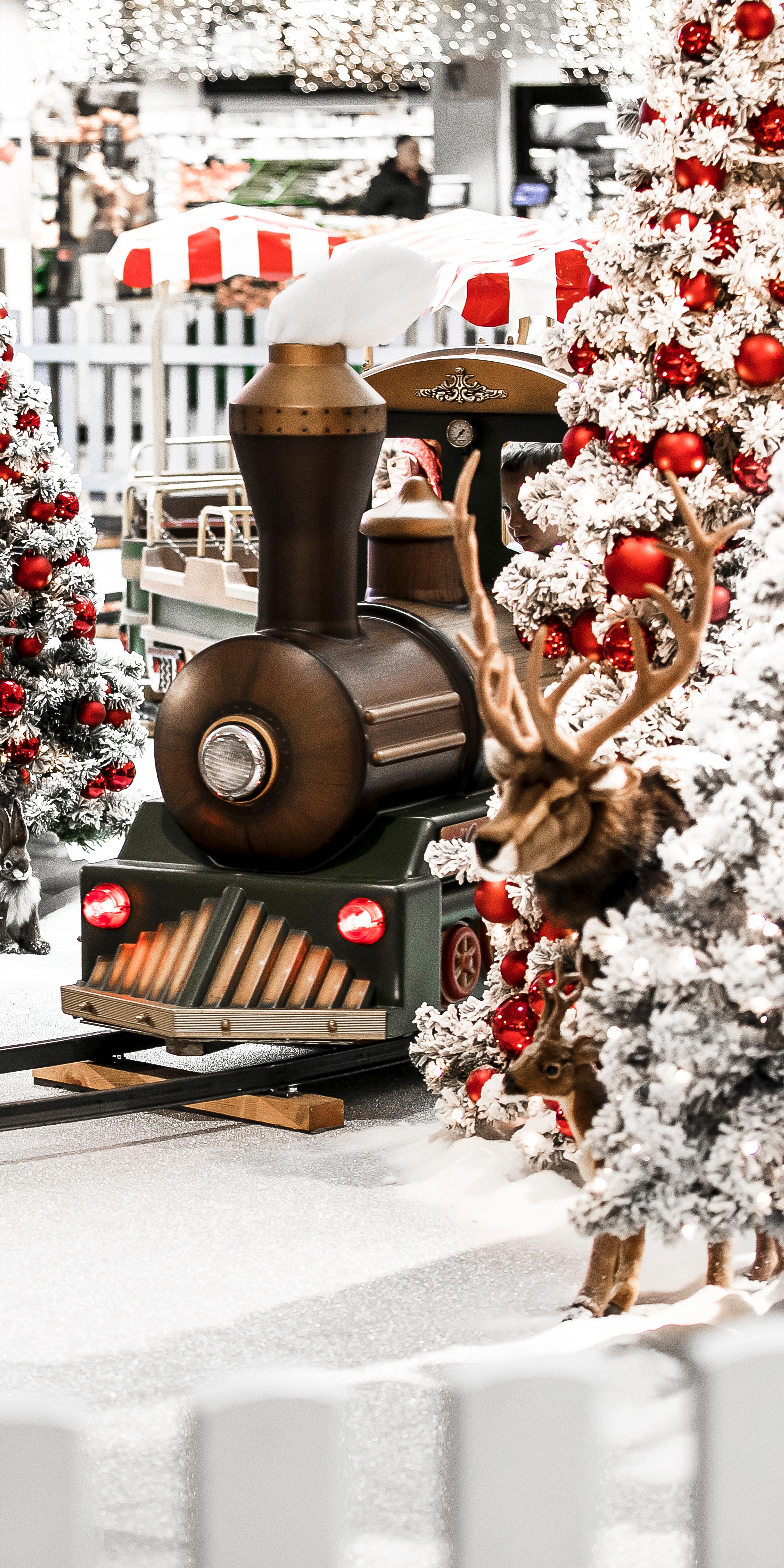 Weihnachten Coop Letzipark Hirsch Zug