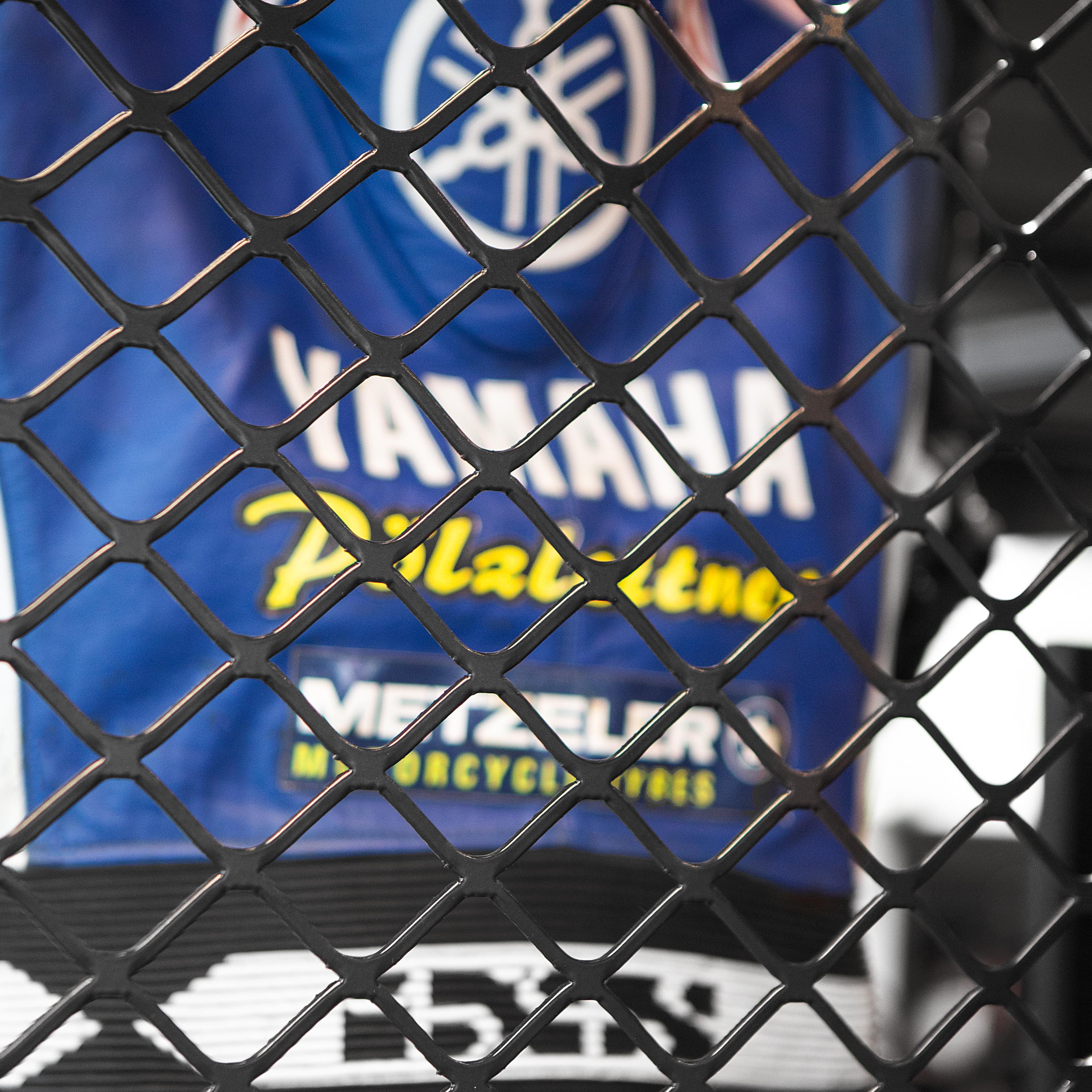 Hostettler Hall of Fame Metall Detail Yamaha